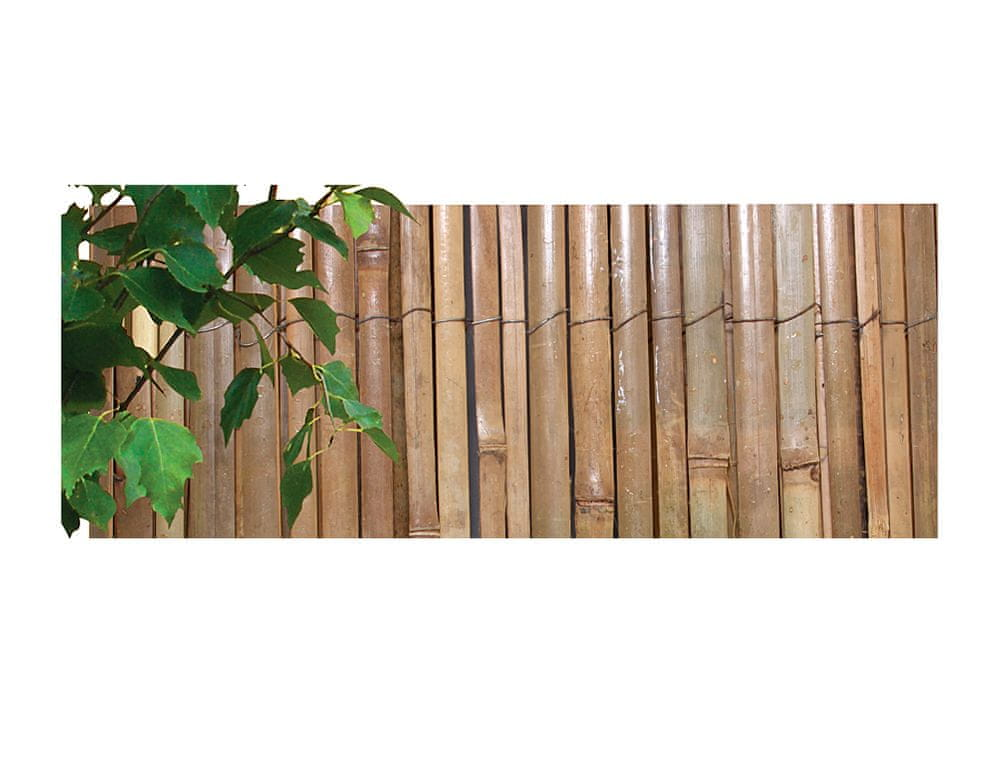 NOHEL GARDEN Rohož ze štípaného bambusu 2 x 5 m