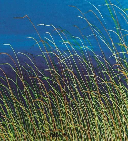 FABRIZIO Seascape