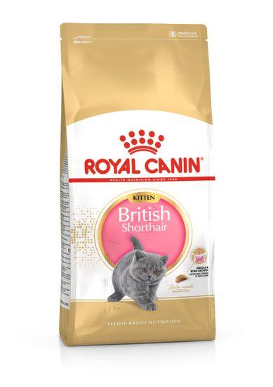 Royal Canin British Shorthair Kitten hrana za britanske kratkodlake mačiće, 10 kg