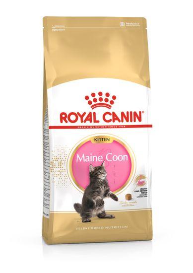 Royal Canin Maine Coon Kitten hrana za mačiće Main Coon, 10 kg