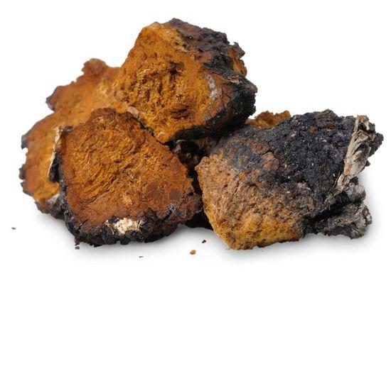 Nature's finest Bio goba čaga v prahu, 125 g