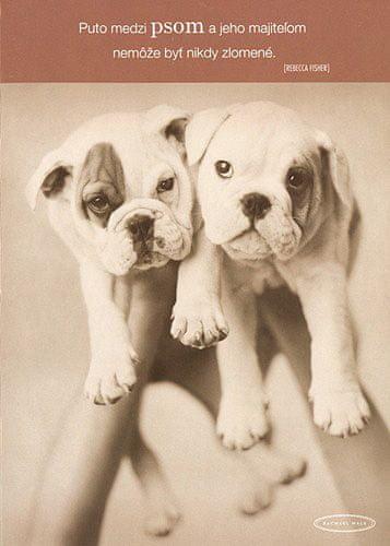 Rachael Hale Üdvözlőlap nagy , két kutya a kezén