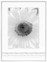 Tradag Fotorámeček 70x100 bílý plexi