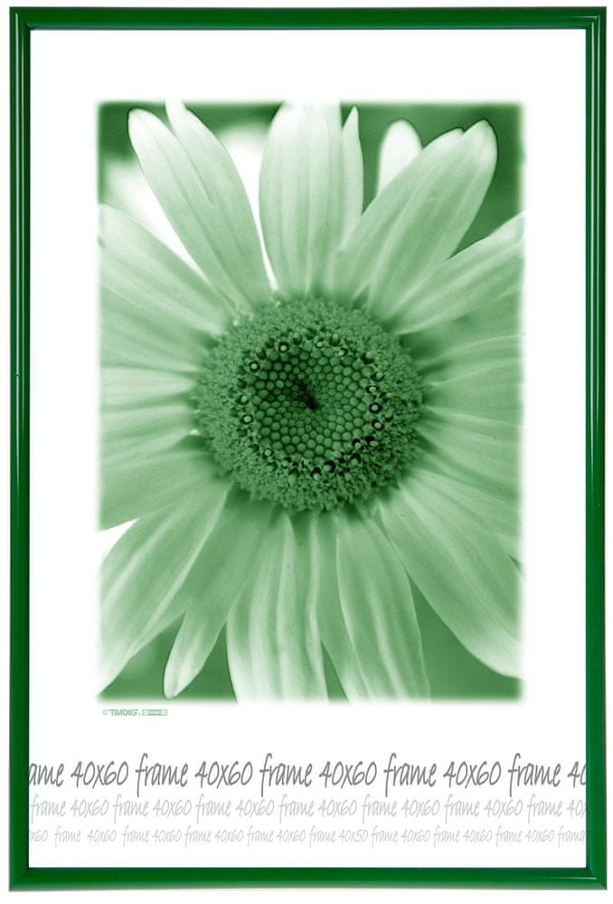 Tradag Fotorámeček 40x60 zelený plexi