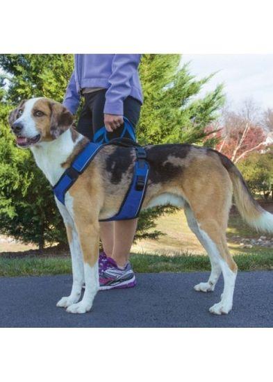 PetSafe Postroj pro psa EasySport™