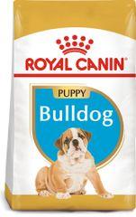 Royal Canin Bulldog Puppy 3 kg