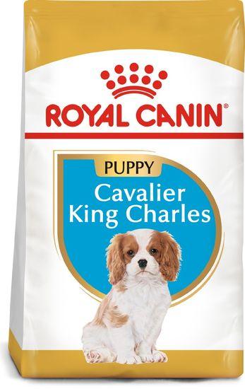 Royal Canin briketi za pse Cavalier King Charles Puppy 1,5 kg