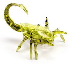 Scorpion zelená