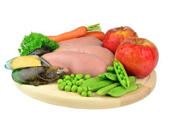 Calibra Premium Line Adult Large hrana za odrasle pse velikih pasem, 2 x 12 kg