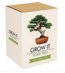 Popron.cz Grow it - Bonsai