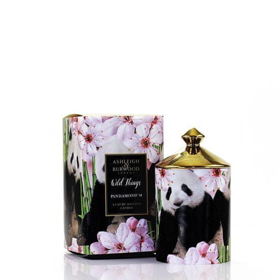 Ashleigh & Burwood Dišeča sveča DIVJE STVARI - ZELEN BAMBOO (zeleni bambus), 320 g, PANDAMONIJ