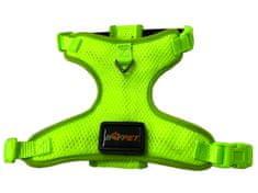 BAFPET svijetleći LED ovratnik, zelena, veličina S