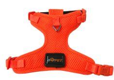 BAFPET svetleča LED ovratnica, oranžna, velikost S