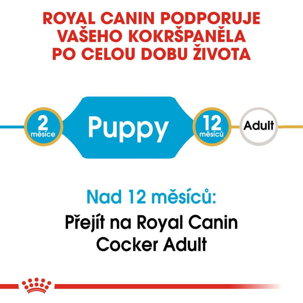 Royal Canin Cocker Puppy 3 kg