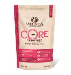 WELLNESS-CORE Sterilised Salmon Recipe 300 g