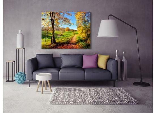 Dimex Obrazy na plátne - Lúka 100 x 75 cm
