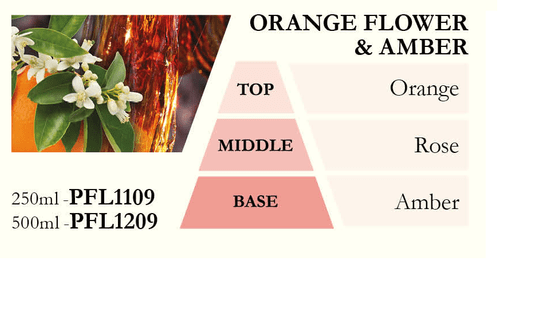 Ashleigh & Burwood Náplň do katalytické lampy AMBER FLOWER (květy ambry), 500 ml