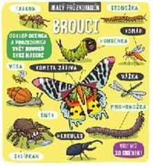 Brouci - Malý průzkumník