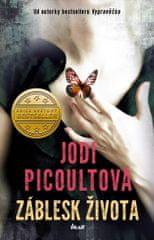 Picoultová Jodi: Záblesk života