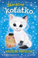 Daze Hayley: Zázračné koťátko 1 - Kouzelné přátelství