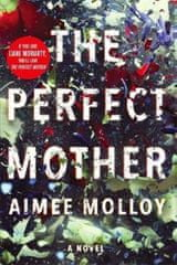 Molloy Aimee: Perfect Mother
