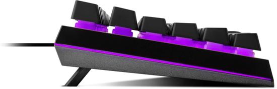 Cooler Master MK110 tipkovnica, gaming, RGB, US (MK-110-KKMF1-US)