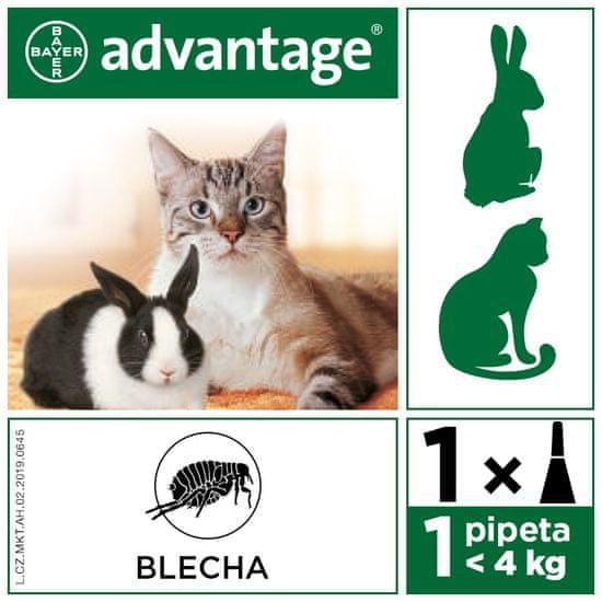 Bayer ADVANTAGE Spot-on Cat 4x0,4ml (pro kočky do 4kg)