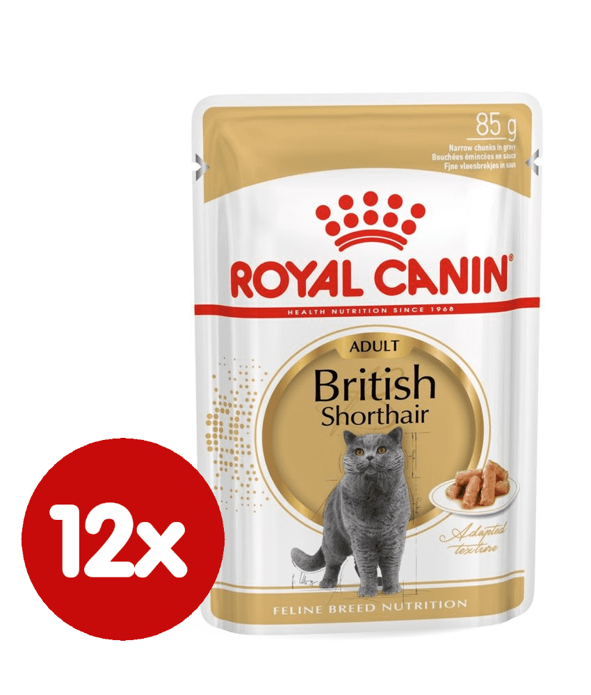 Royal Canin British Shorthair 12x85 g