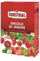 Substral specijalno mineralno gnojivo za jagode, 1 kg