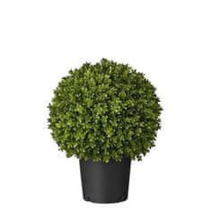 Lene Bjerre Bukszpan FLORA, zielony, wysokość 47 cm