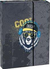 Stil Teczka na zeszyty A4 Cool bear