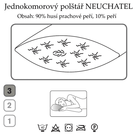 Ch. Fischbacher Poduszka NEUCHATEL 65 x 65 cm wykonana z puchu gęsiego z bawełny