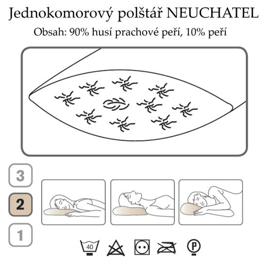 Ch. Fischbacher Poduszka NEUCHATEL 80 x 80 cm wykonana z puchu gęsiego z bawełny