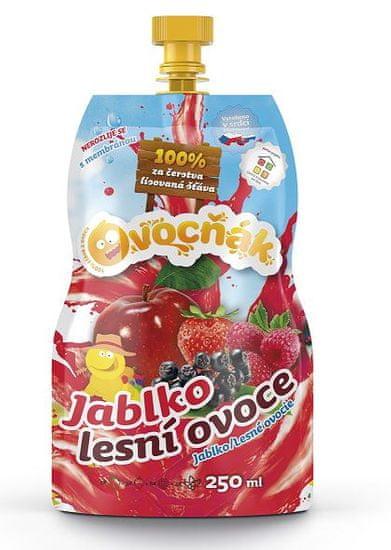 Ovocňák MOŠT JABLKO-LESNÍ OVOCE 12x250ml