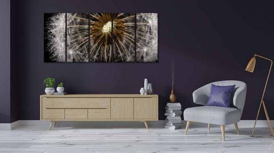 InSmile Pampeliška makro foto Velikost: 100x45 cm