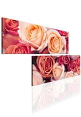 Atypický obraz růže Velikost (šířka x výška): 80x40 cm