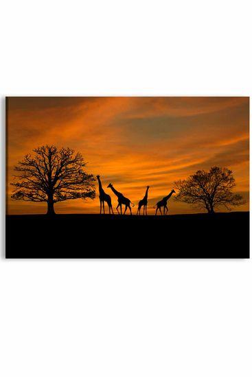 InSmile Obraz západ slunce na safari Velikost: 90x60 cm