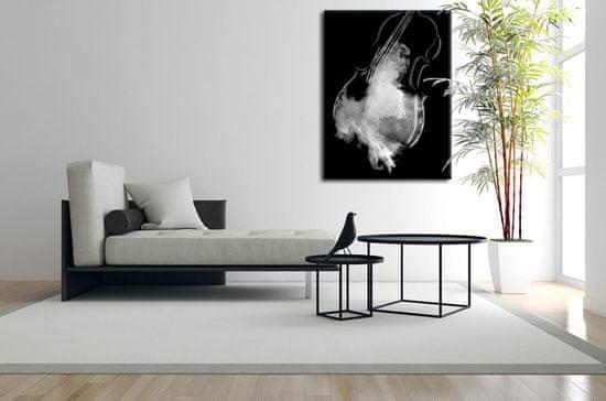 InSmile Obraz basa II Velikost: 60x90 cm