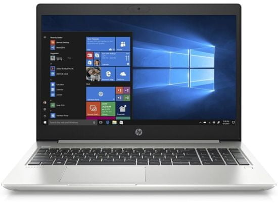 HP ProBook 455 G7 (12X19EA)