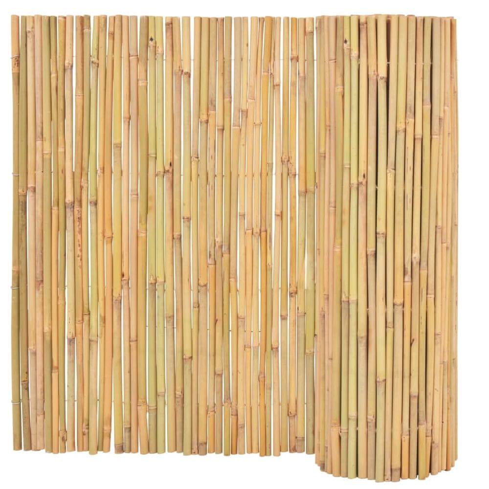 shumee Bambusový plot 300x100 cm