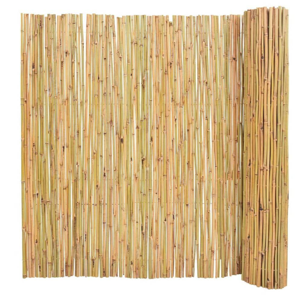 shumee Bambusový plot 300x150 cm