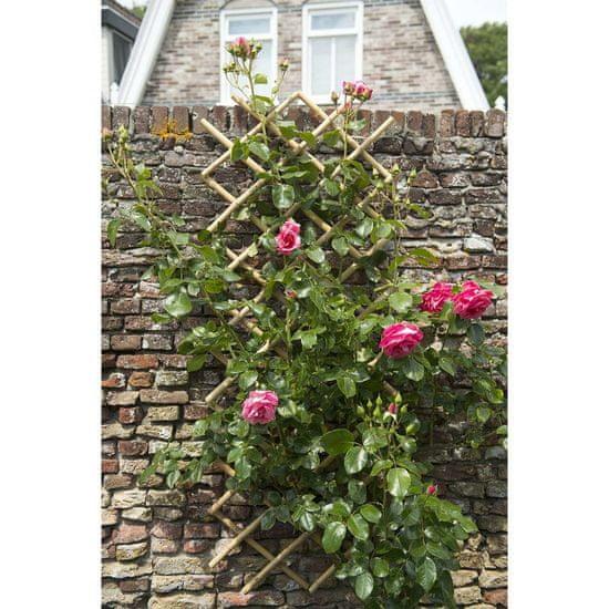 shumee Nature Oporna mreža za rastline 70x180 cm bambus 6040721