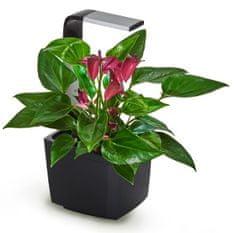 Tregren T3 Kitchen Garden, chytrý květináč, černý