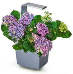 Tregren Tregren T3 Kitchen Garden, chytrý květináč, šedý