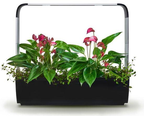 Tregren Tregren T12 Kitchen Garden, šikovný kvetináč, čierny