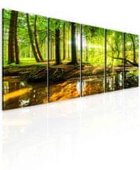 Obraz lesní zátiší Velikost: 100x45 cm