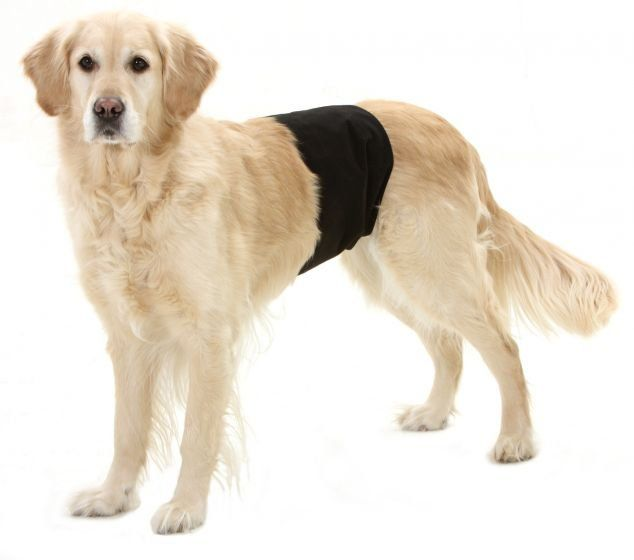 Karlie inkontinenční kalhoty pro psy černé 74x23 cm