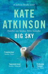 Atkinsonová Kate: Big Sky - Jackson Brodie