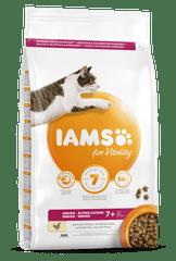 IAMS Vitality za starije mačke, sa svježom piletinom, 800 g
