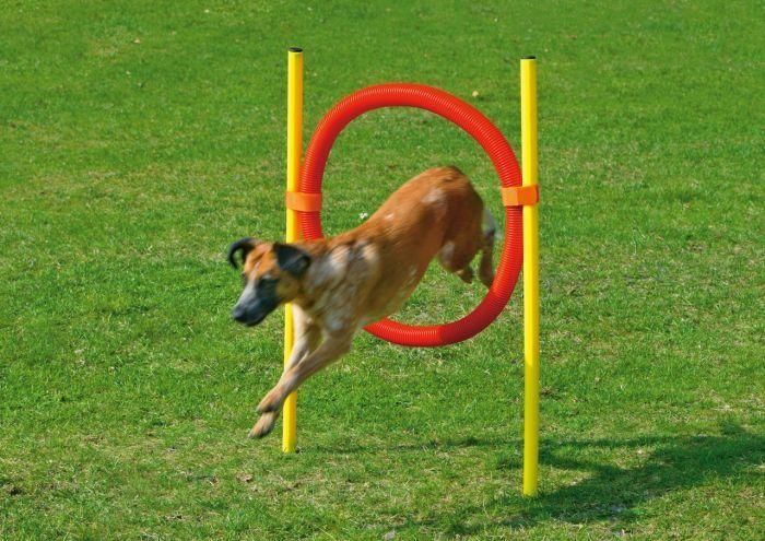 Karlie agilní překážka - kruh, žlutá/červená